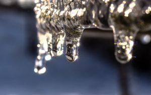 frost_billede